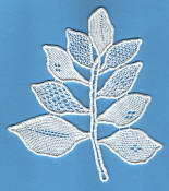 Needlelace leaf spray